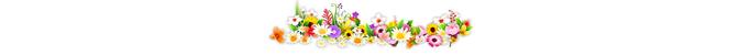 ดอกไม้ (17).png