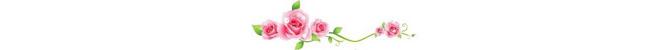 ดอกไม้ (35).jpg