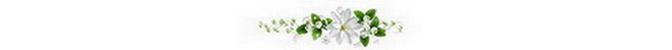ดอกไม้ (37).jpg