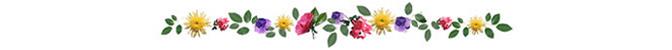 ดอกไม้ (39).jpg