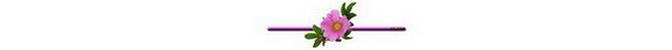 ดอกไม้ (8).jpg