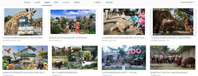 สวนสัตว์.jpg