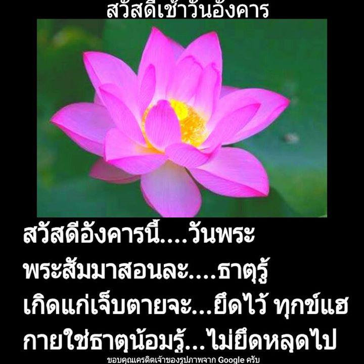 1504215487_396_ธรรมะสวัสดีเช้าวันอังค.jpg