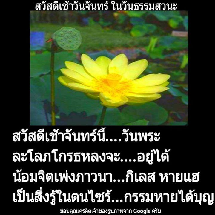 1504322345_930_ธรรมะสวัสดีเช้าวันจันท.jpg