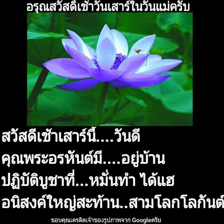 1504323926_256_ธรรมะสวัสดีเช้าวันเสาร.jpg