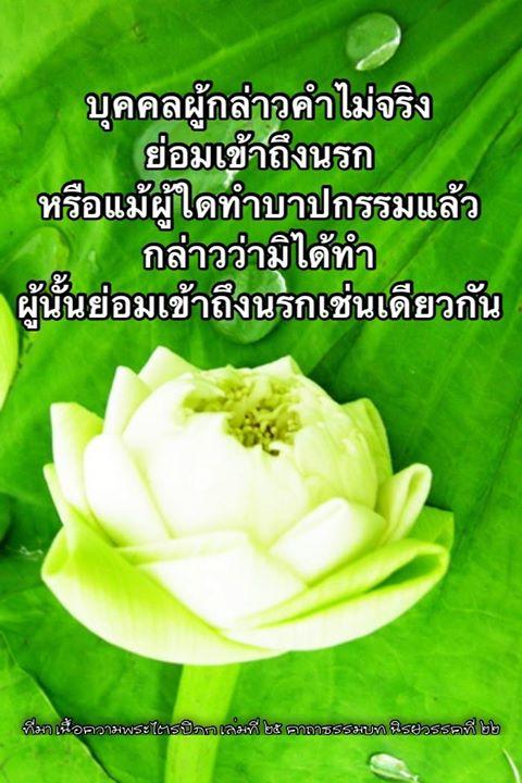 1507219026_854_notitle.jpg
