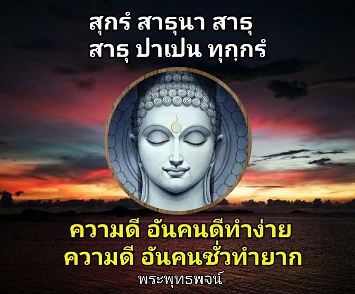 1519053007_286_notitle.jpg
