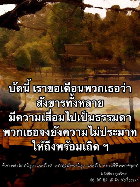 1528857787_653_notitle.jpg