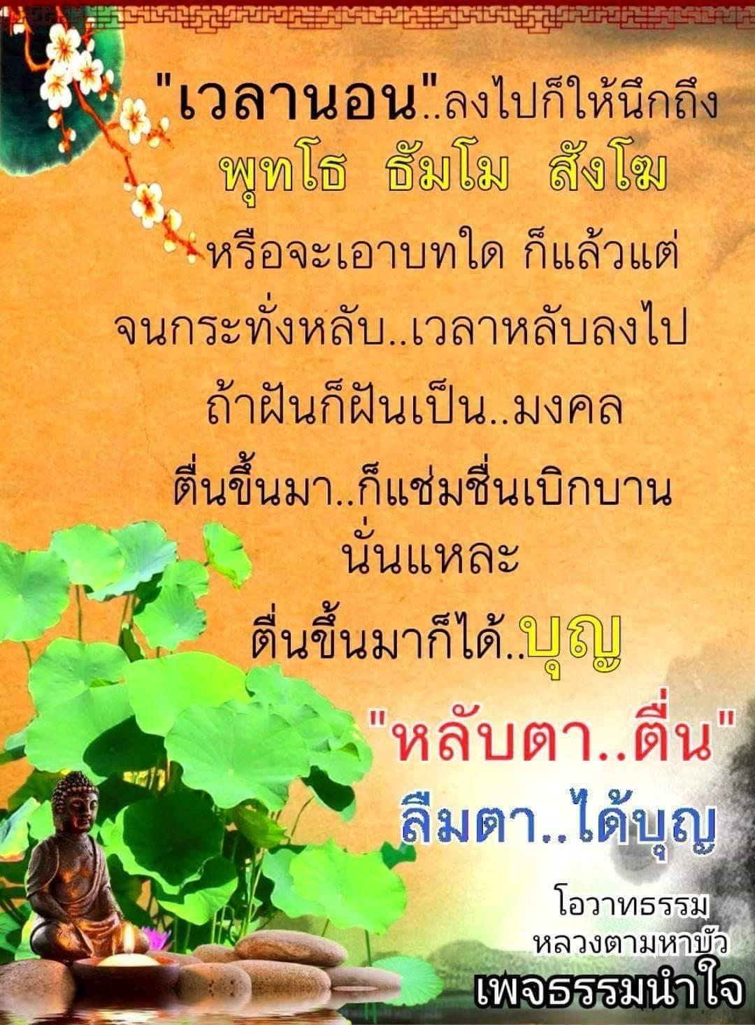 1558370831926.jpg