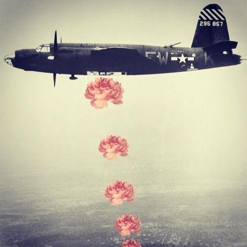 2cd165a31b03bcf4d8ced7365f274fac--flower-bomb-war.jpg
