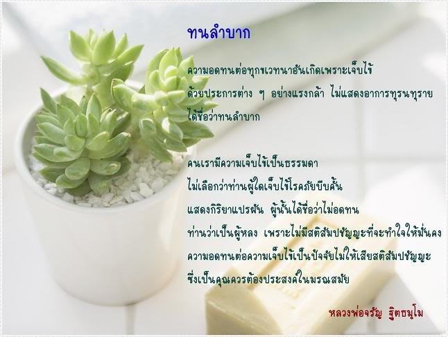 3-jpg.2731352.jpg