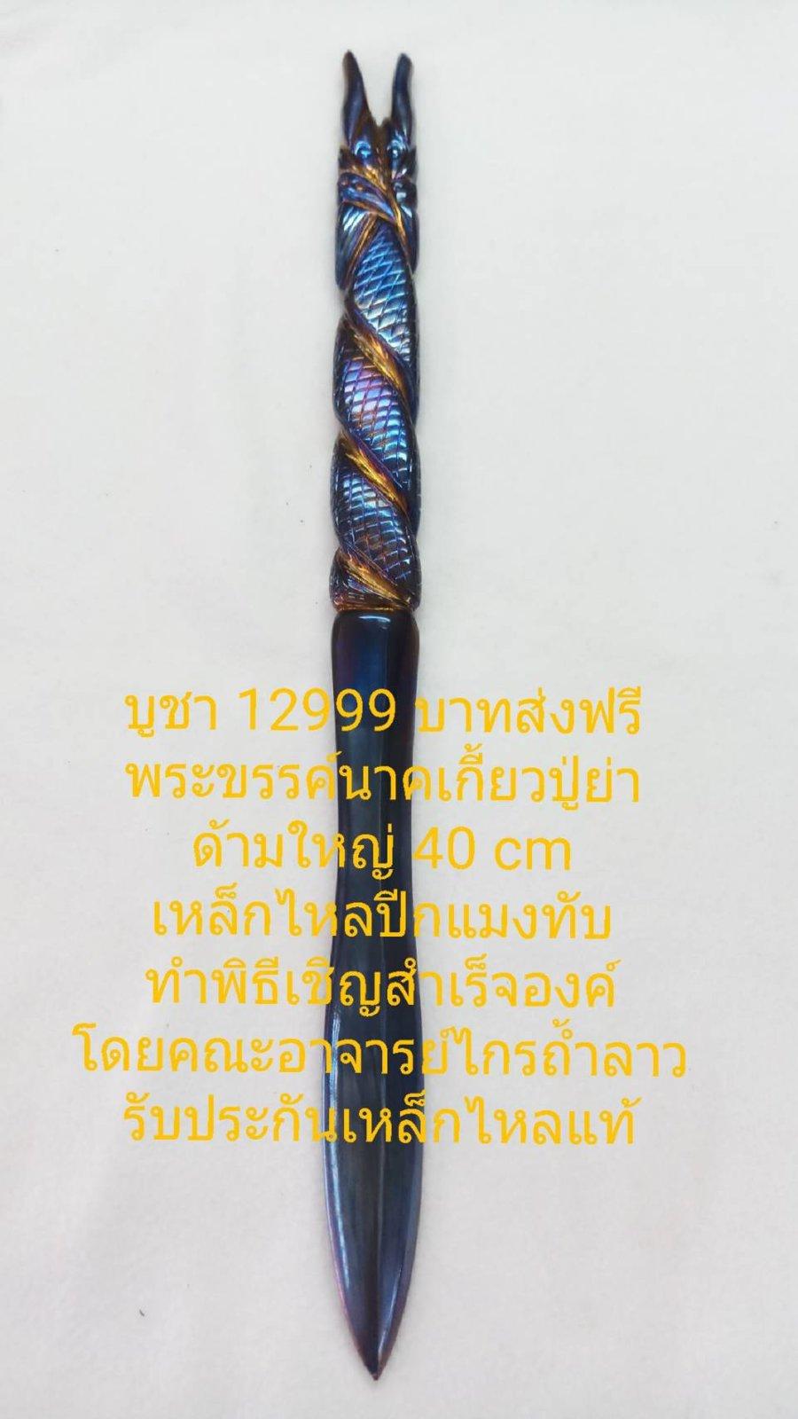 463509.jpg