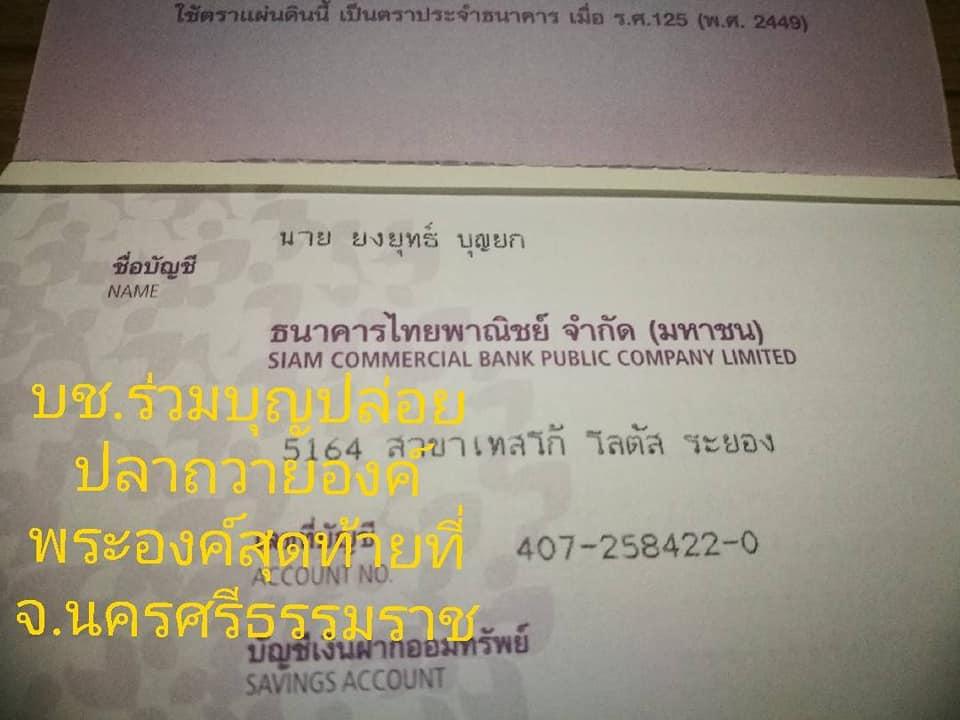 46880997_1465196880279498_2878551922900467712_n.jpg?_nc_cat=111&_nc_ht=scontent.fkkc1-1.jpg