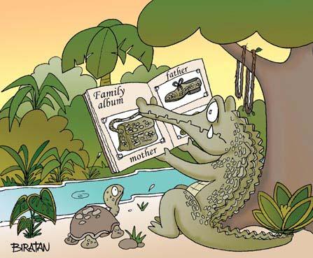 alligaterfamily.jpg