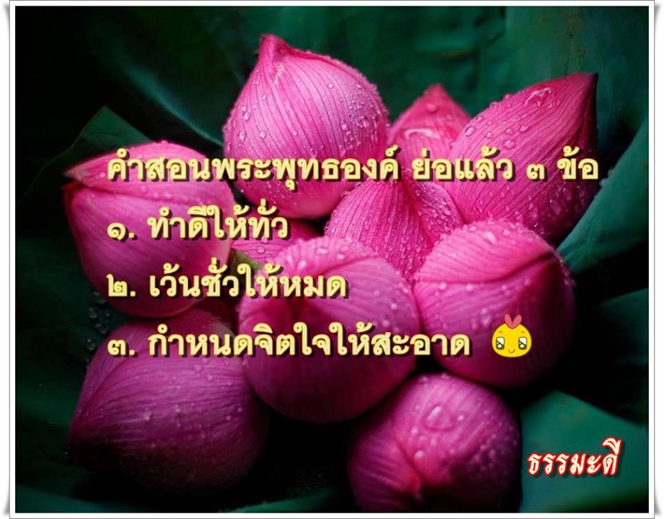 Buddha words only 3.jpg