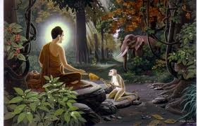 BuddhaAndMonkey.jpg