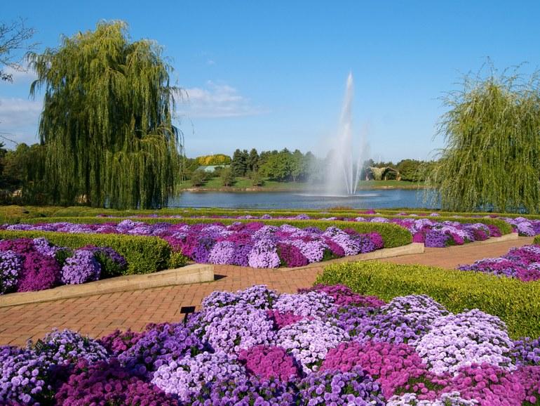 chicago-botantic-garden-GettyImages-95607462.jpg