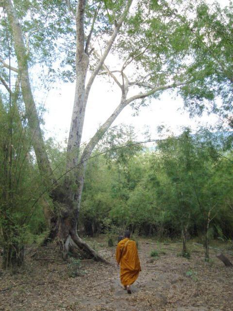 Dhutanga02.jpg
