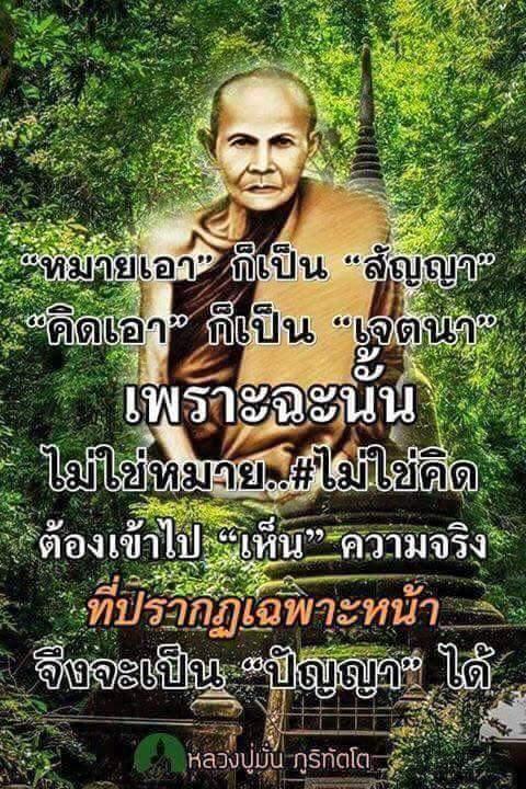 FB_IMG_1491059761071.jpg