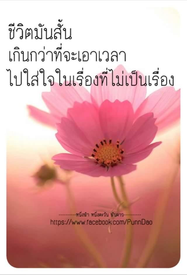 FB_IMG_1514273826145.jpg