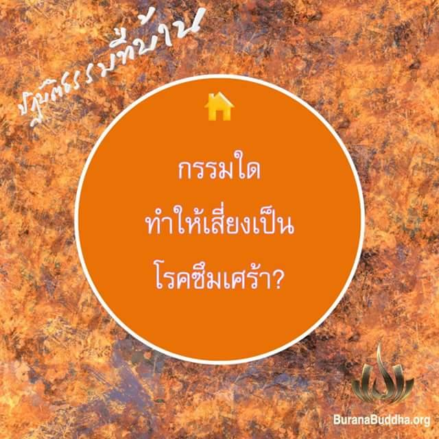FB_IMG_1515663586732.jpg