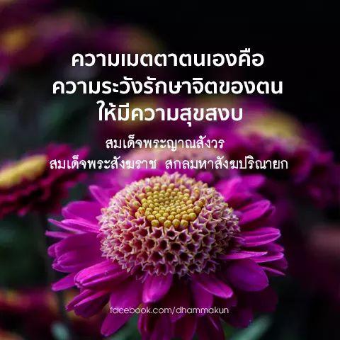 FB_IMG_1555840995852.jpg
