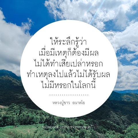 FB_IMG_1563429751580.jpg