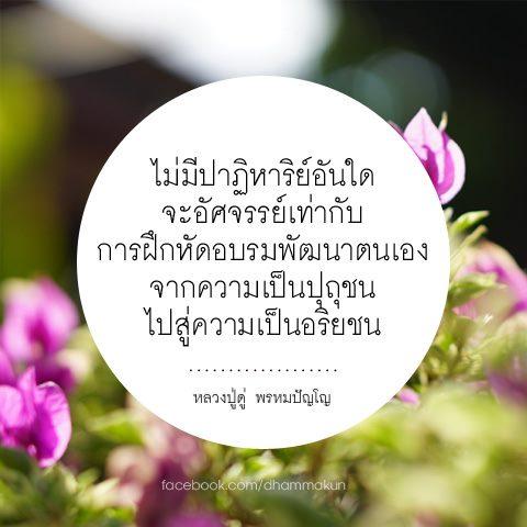 FB_IMG_1563751427270.jpg
