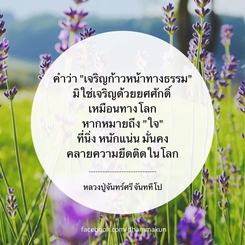 FB_IMG_1573184449081.jpg