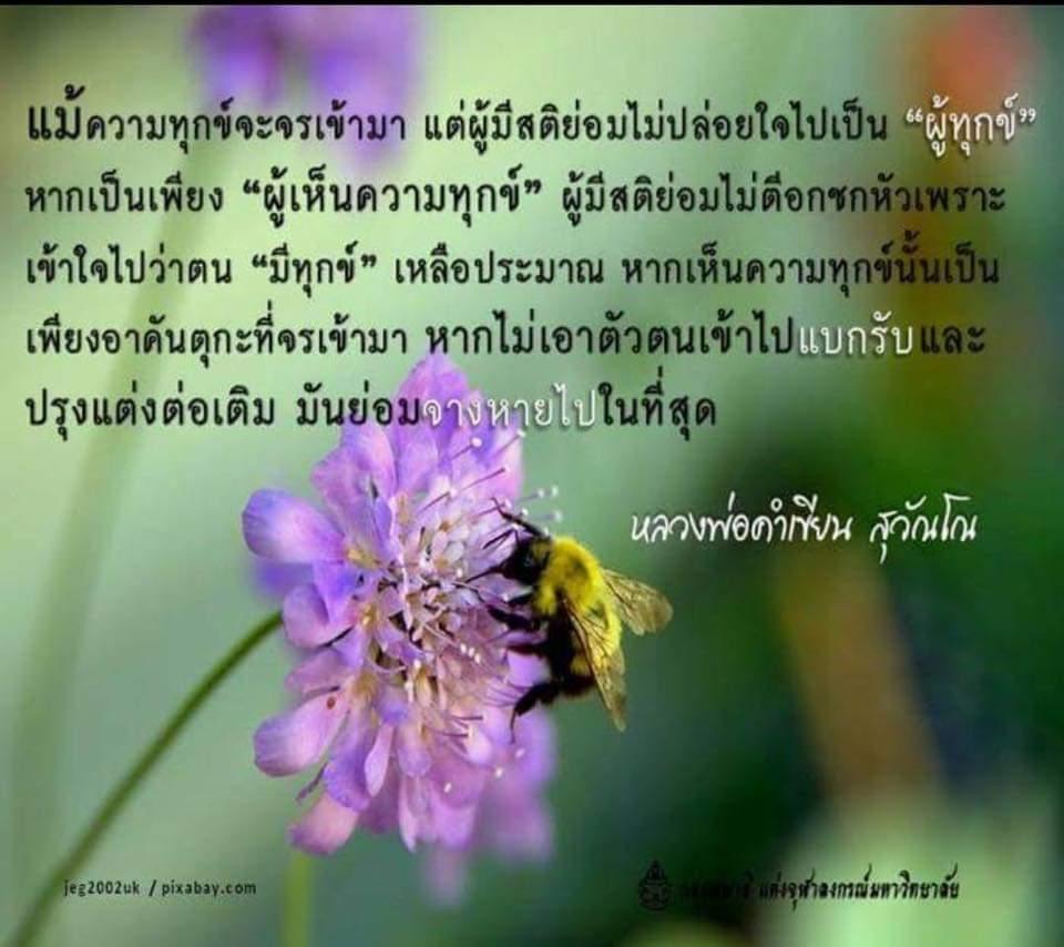 FB_IMG_1575350803487.jpg