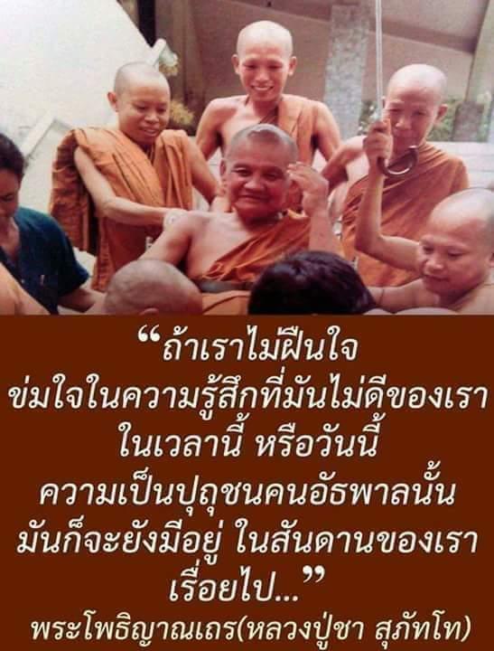 FB_IMG_1575464741573.jpg