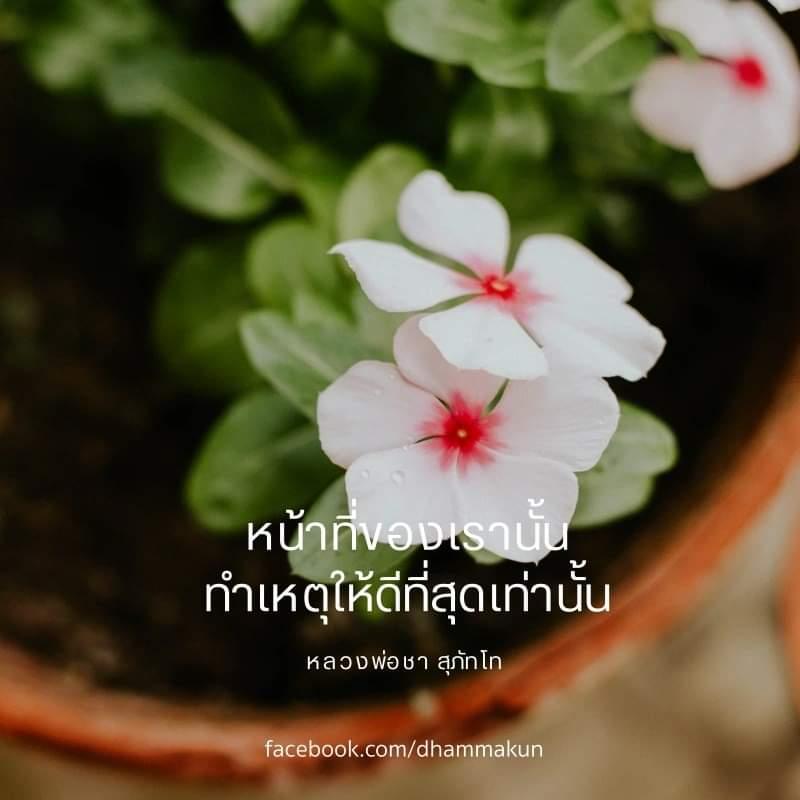FB_IMG_1582521484458.jpg