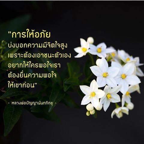 FB_IMG_1582722107232.jpg