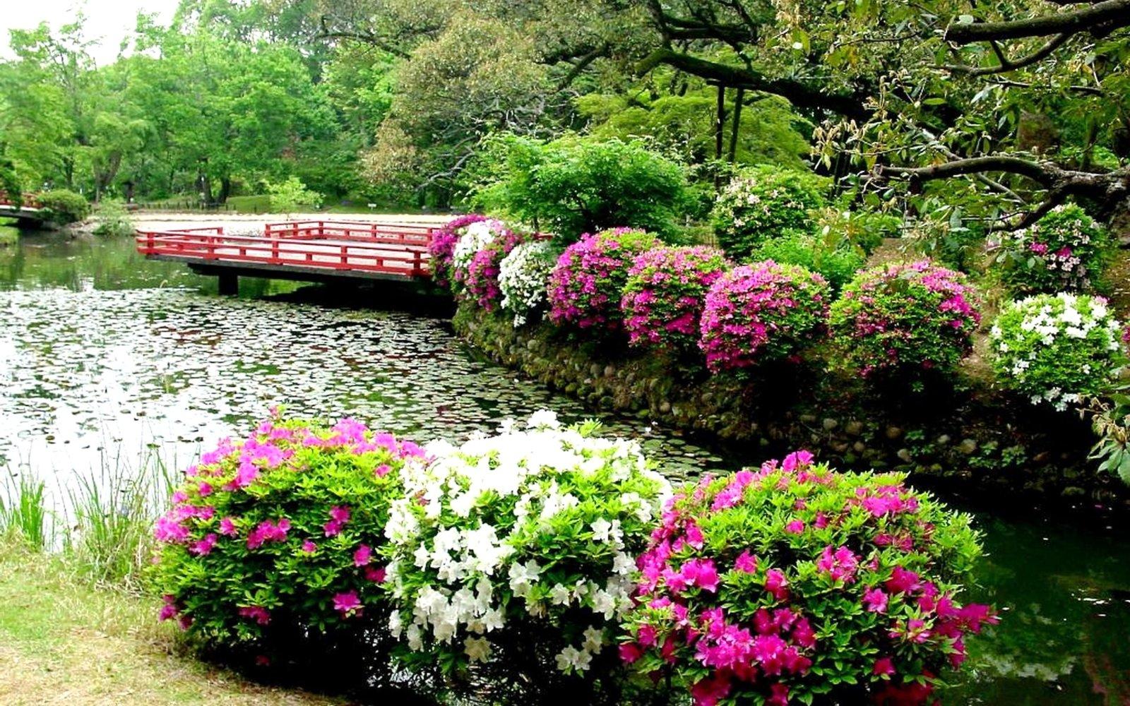 flower-garden-house-.jpg