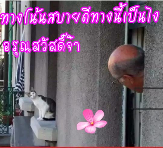 image_1485560793389.png