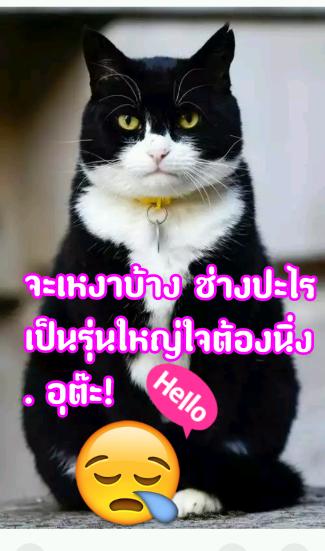 image_1486471059722.png