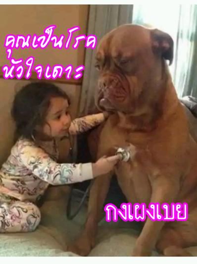 image_1486745417377.png
