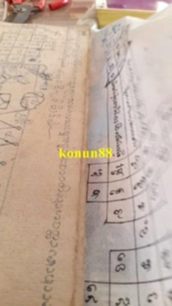K9bi.jpg