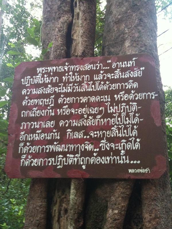 LpChaDhamma1.jpg