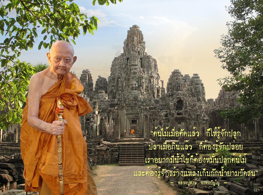 lphongforest1-jpg.jpg
