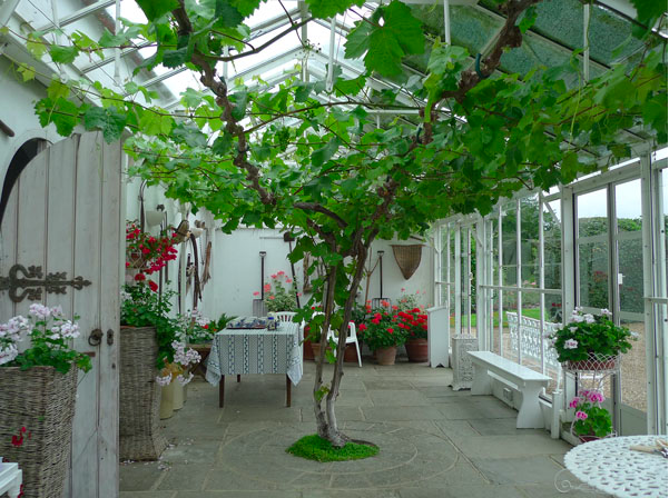 Mary-Berrys-Conservatory1.png