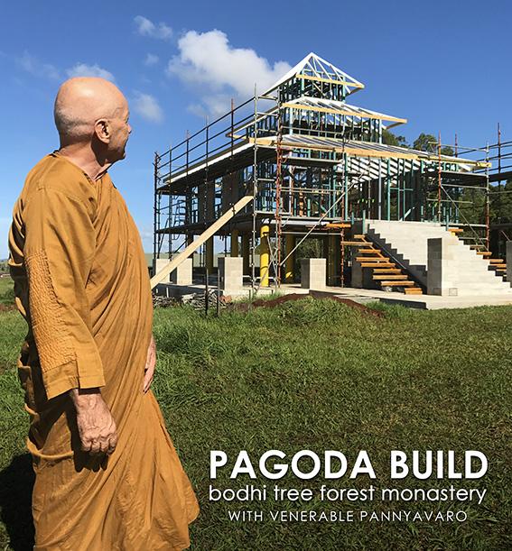 pagoda_build.jpg