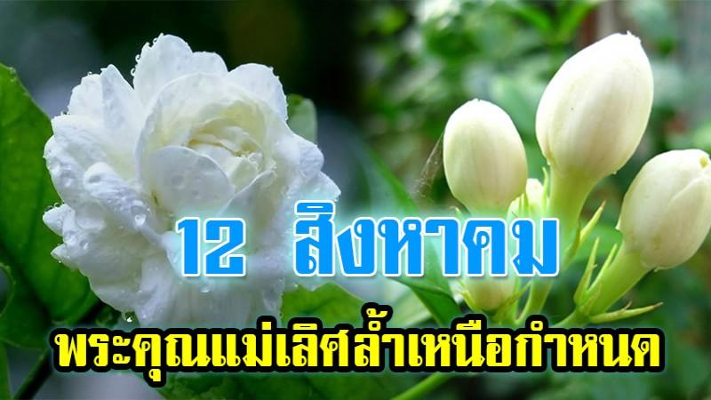 partiharn_1533353611_1920.jpg
