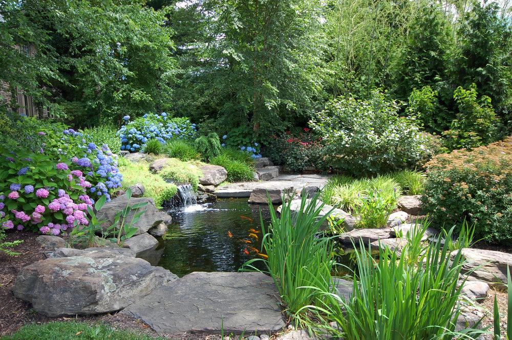 Pondworks_koi+pond_garden_fish_design+build.jpg