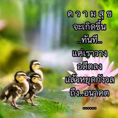 ?temp_hash=3ef47550e86c2e3bef81b042c77438e6.jpg
