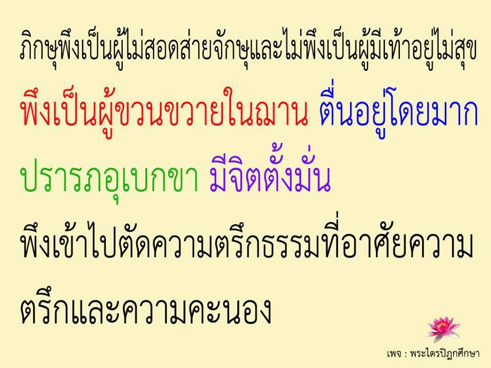 ?temp_hash=adaa68f8efceac655f662cc08b70afe5.jpg