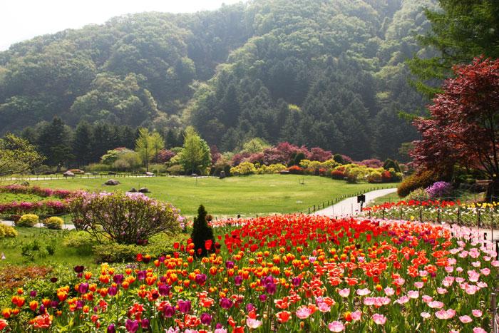 Thurs Calm_spring_22L.jpg