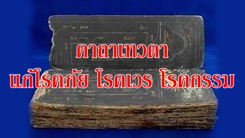 tnews_1504532407_4325.jpg