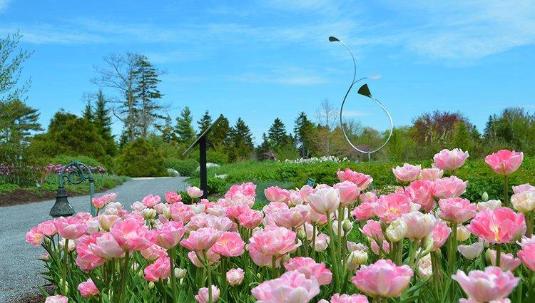 Tuesday Coastal+Maine+Botanic+Garden.jpg
