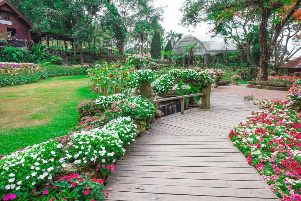 Wednesday 11-colorful-garden.jpg